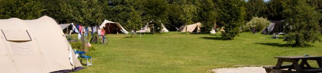 Uitsnede Camping